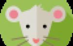 Чем является календарь животных по восточному гороскопу