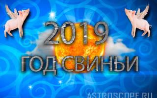 Обзор гороскопа на 2019-й год по знакам зодиака: все о чём вы должны знать