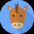 Год лошади — какие года рождения, характеристика знака