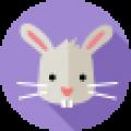 Год кролика: какие года рождения, характеристика знака