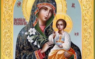 Икона «Неувядаемый Цвет» — описание, кому и для чего ей молиться, дни почитания, где расположить