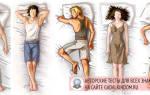 Взаимосвязь поз сна и особенностей характера — как узнать о человеке по положению во сне