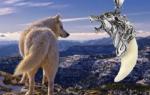 Амулет клык волка — значение и немного истории кулона